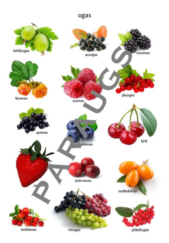 16 printējami plakāti (e-piegāde)