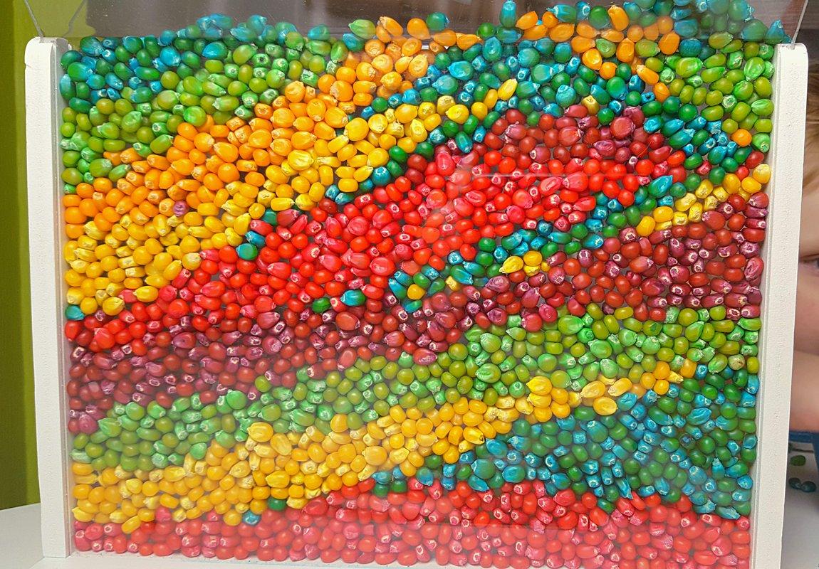 Krāsaini kukurūzas graudi linu maisiņā